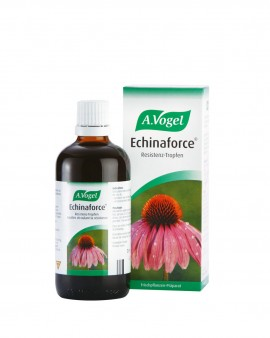A.VOGEL Echinaforce Protect 1140mg